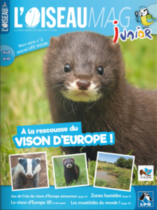 L'oiseau Mag Junior Vison d'Europe